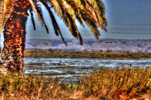 bay & nbsp, gamta & nbsp, išsaugoti, šlapynes, Palo & nbsp, alto, Kalifornija, paukštis, paukščiai, laukinė gamta, pelkės, vanduo, gamta, meno, Impresionistas, dažytos, palmių & nbsp, medis, kraštovaizdis, Impresionistinės pelkės