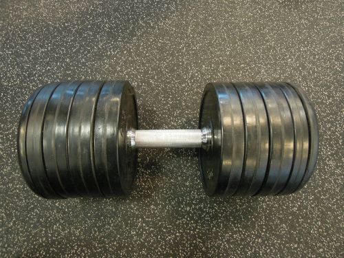 in the gym weight train