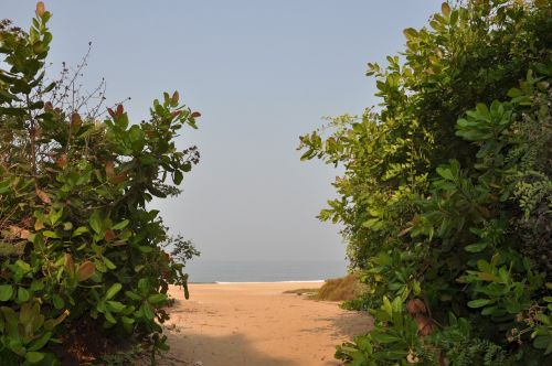 india goa the road to the beach