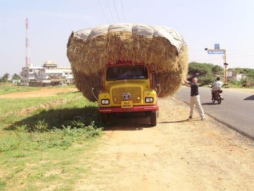 india truck cargo