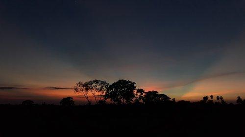 india  dusk  nature