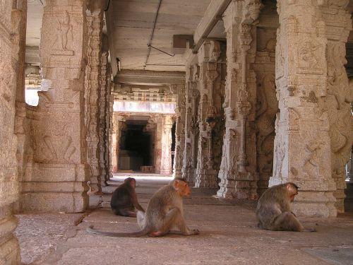 india ape temple