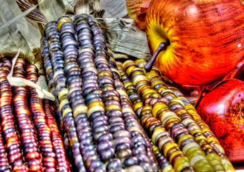 Indian Corn And Apples