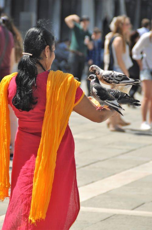 indian woman sari pigeons