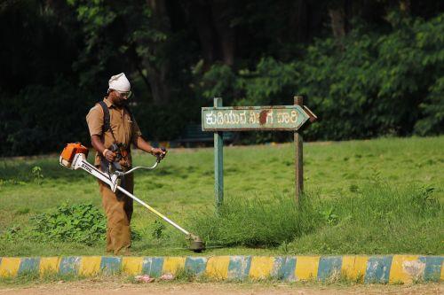 indian worker garden maintenance grass cutter
