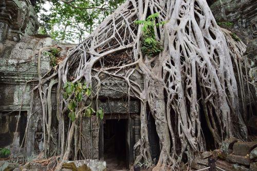 indiana jones lara croft temples