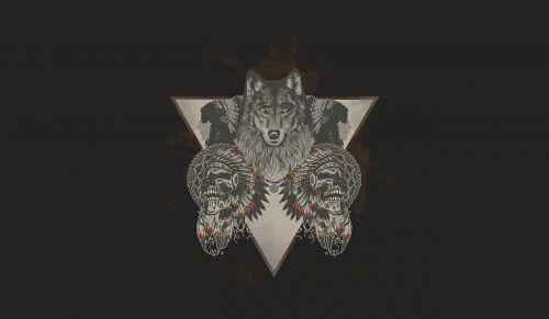 indians wolf skull