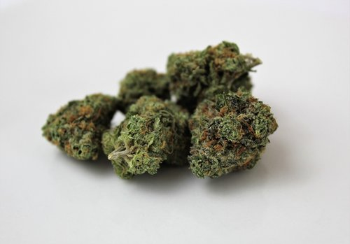 indica  marijuana  weed