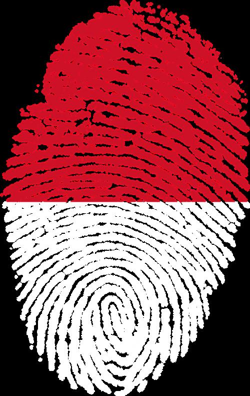 indonesia flag fingerprint
