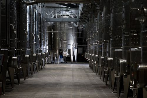 industry modern viniculture