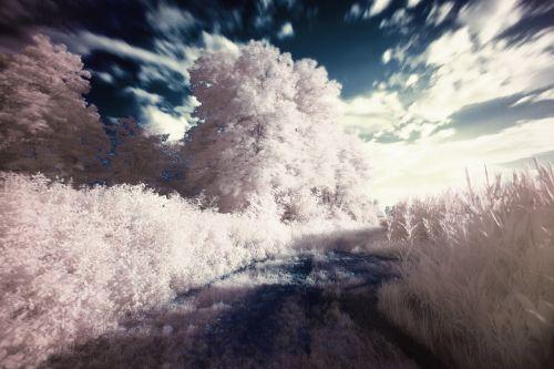 infrared ir vision dream