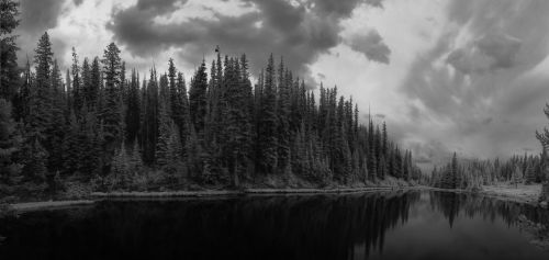 infrared black and white landscape