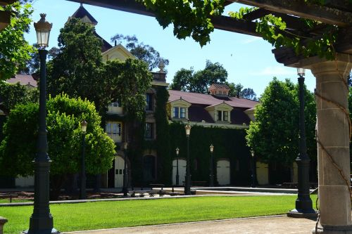 inglenook winery wine