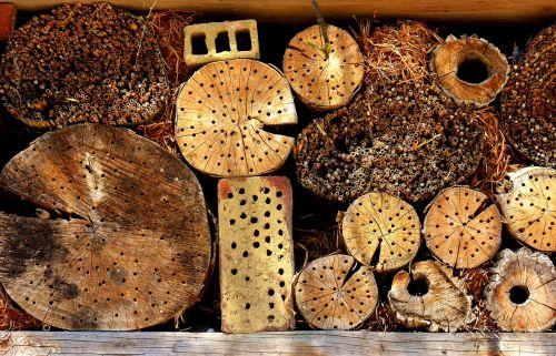 vabzdžių viešbutis,vabzdžių namai,vabzdžių prieglobstis,vabzdžių siena,vabzdžių dėžutė,prieglobstis,vabzdys,skirtingi tipai