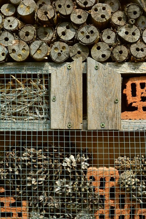 insect hotel wood perforated