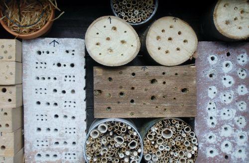 vabzdžių viešbutis,vabzdys,vabzdžių namai,vabzdžių prieglobstis,apsaugos nuo vabzdžių priemonės,gręžimo skylės,perforuotas,mediena,vabzdžių dėžutė