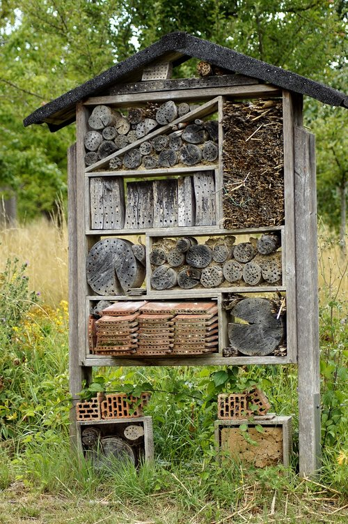 insect hotel  insect house  insect box