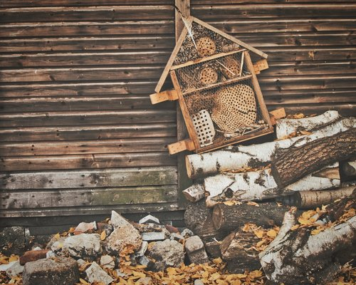 insect hotel  nature conservation  insect house