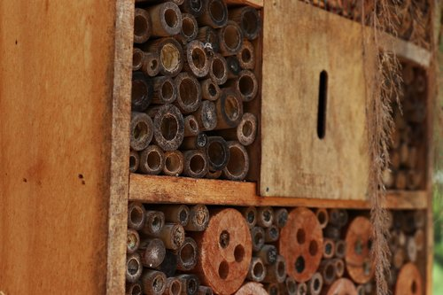 insect hotel  habitat  brown