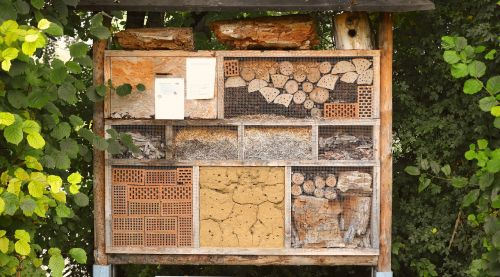 insect house nature conservation hibernate