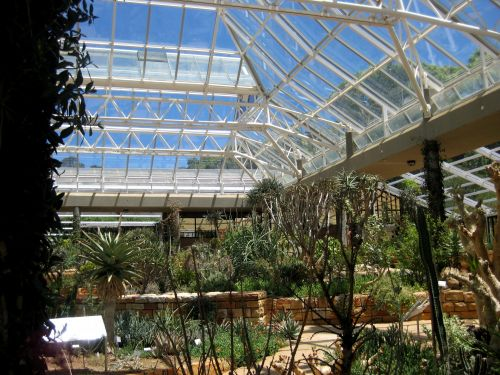 Inside Of Greenhouse 2