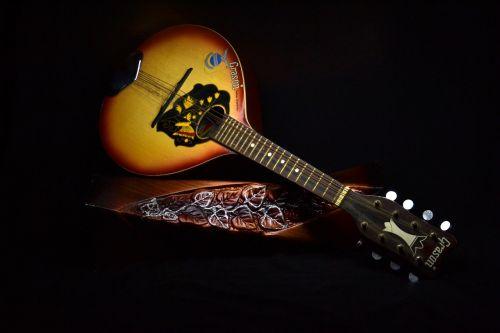 instrument mandolin musical instrument