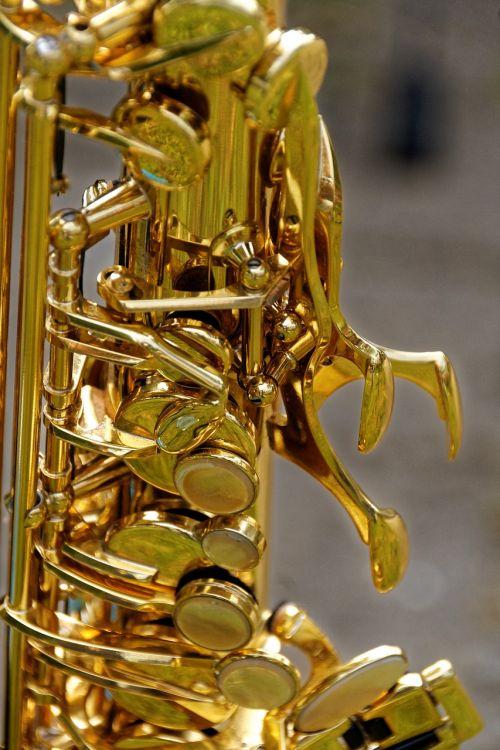 instrument musical instrument wind instrument