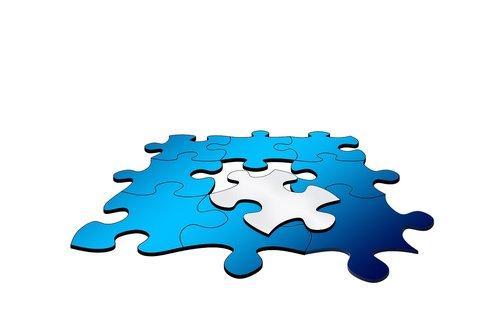 integration  puzzle  migration