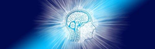 intelligence  brain  think