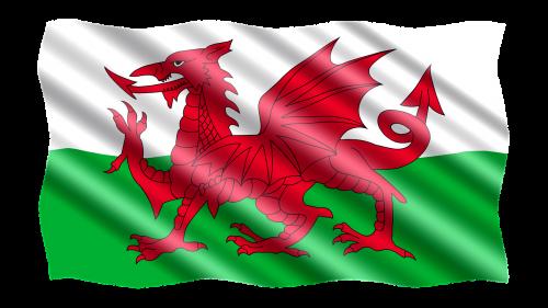 international flag wales
