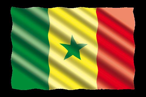 international flag senegal