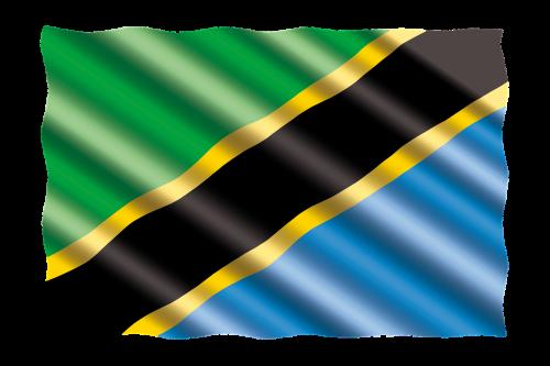 international flag tanzania