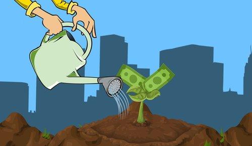 invest  money  growing