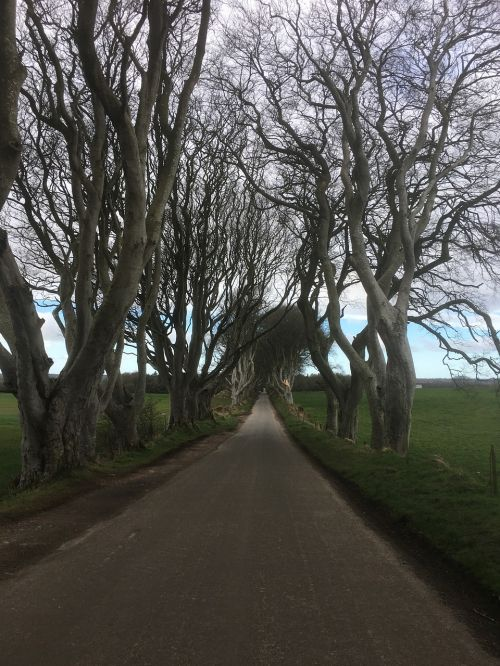 ireland the dark hedges game of thrones series