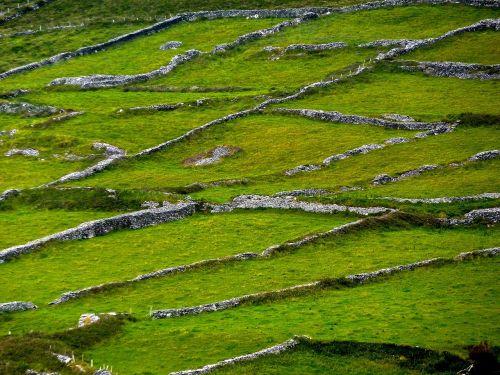 ireland fences stone
