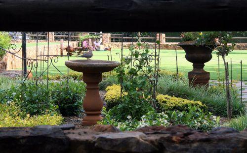 Irene Dairy Farm, Tea Garden