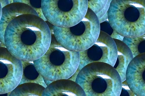 iris pupil see