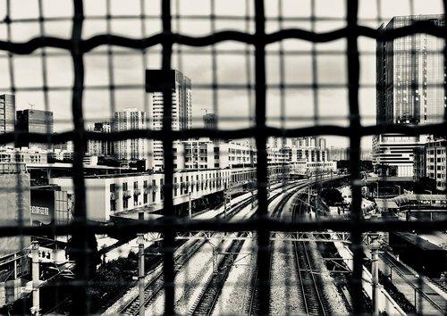 iron mesh  city  tall buildings