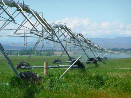 irrigation agriculture farming