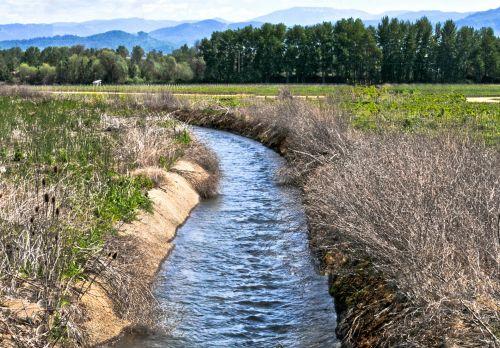 Irrigation Water #2
