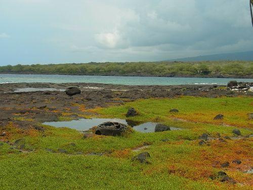 island of hawaii hawaii sea