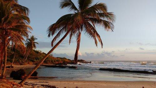 islets  beach  sol