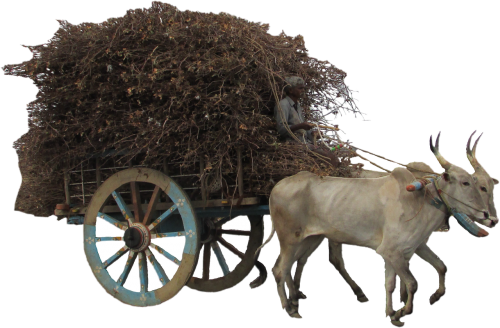 isolated cart transport
