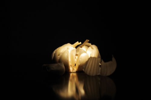 Isolated Garlic Bulb