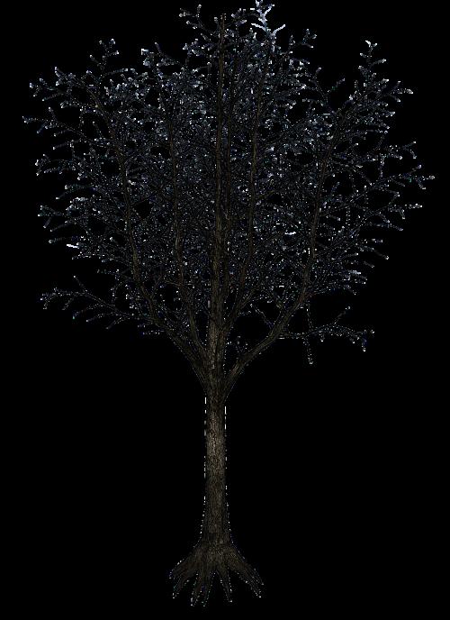 isolated tree tree tribe