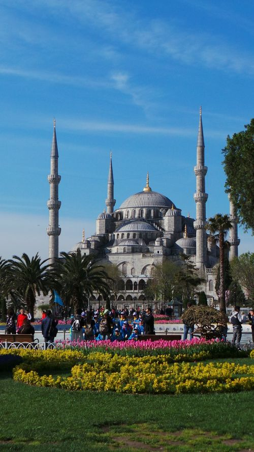 istanbul blue mosque mosque