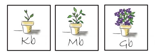 augalai, piešimas, in, kompiuterio & nbsp, simboliai, iliustracijos, tai piešimas