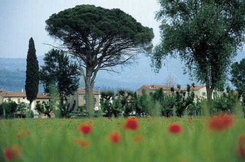 italy tuscany homes