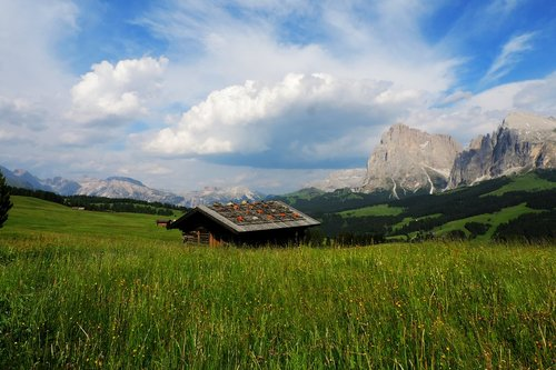 italy  south tyrol  seiser alm