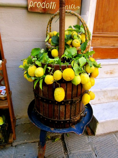 italy lemons fruit